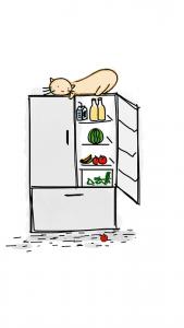 fridge-no-energy