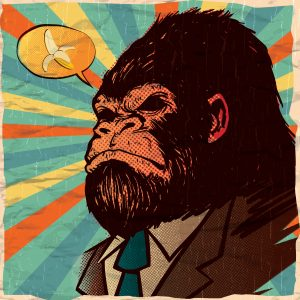 gorillas-bananas
