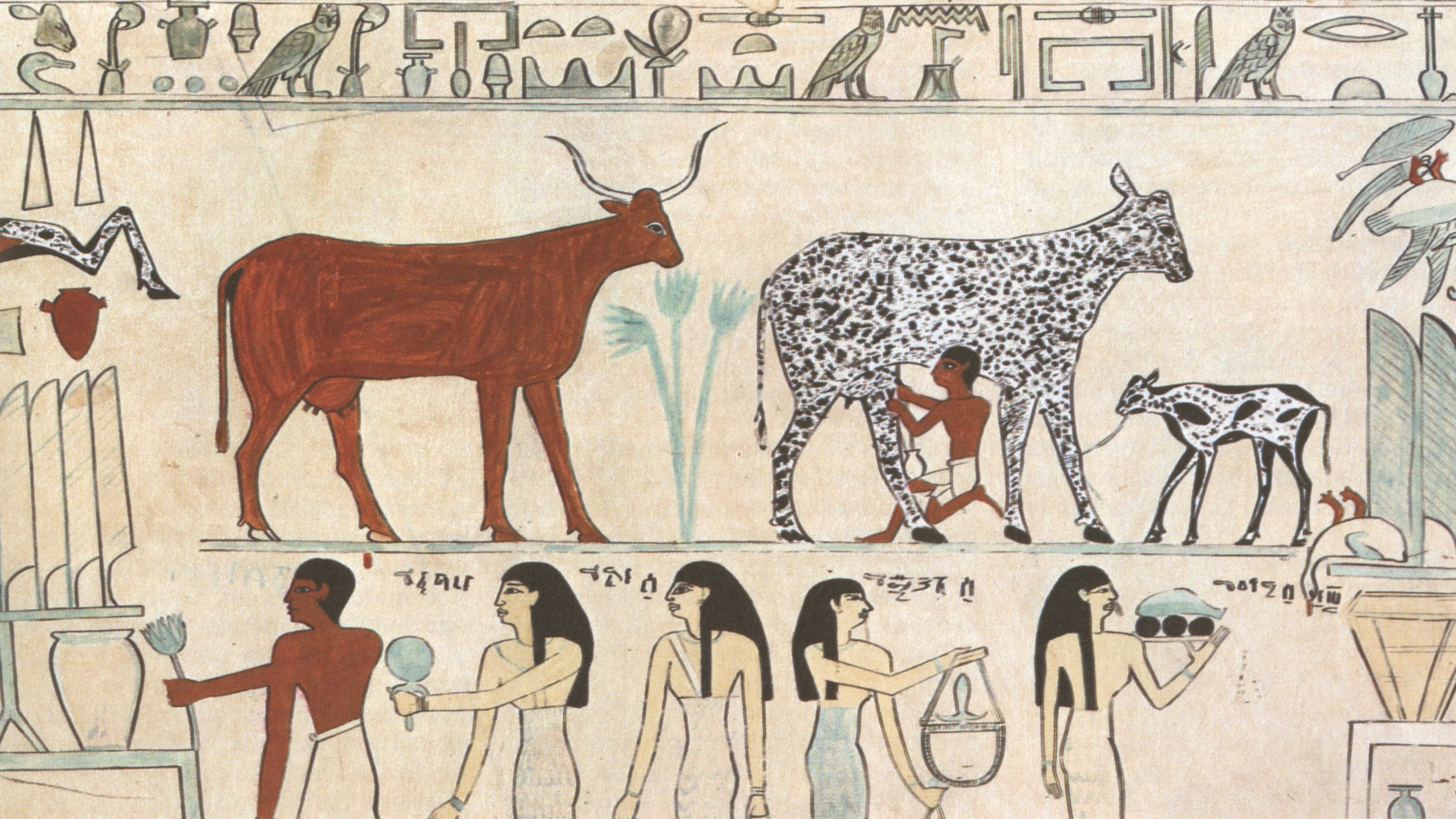 egyptian-animals