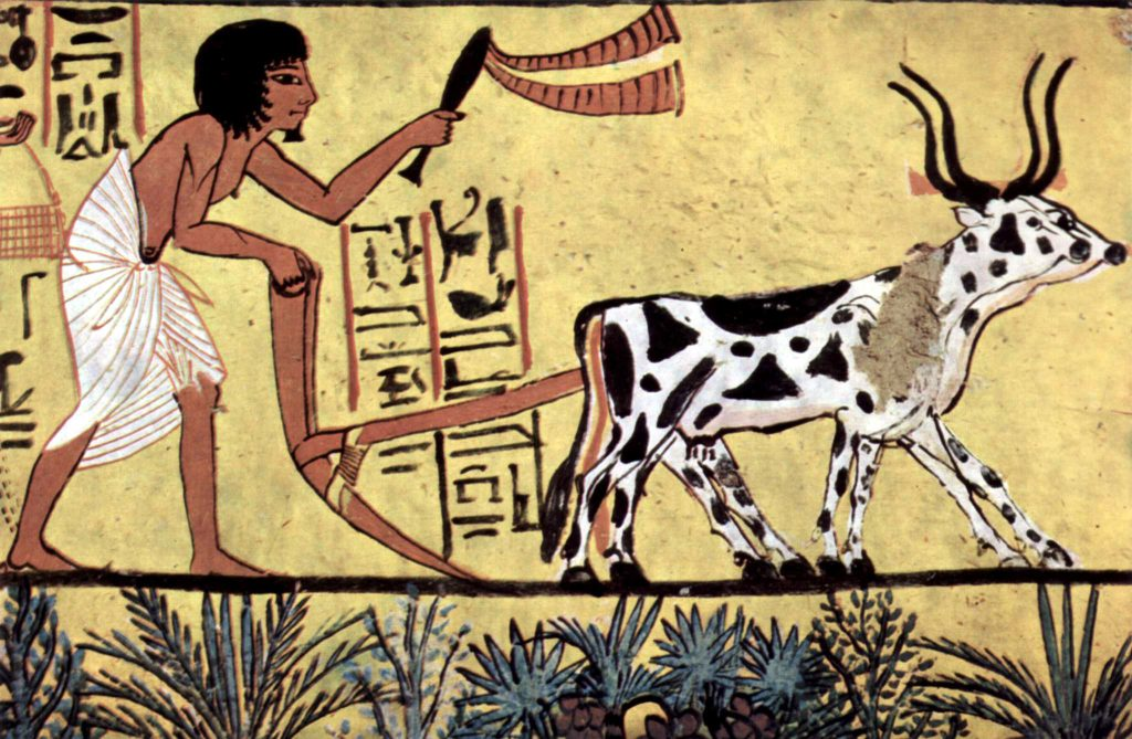 farming-ancient-greece