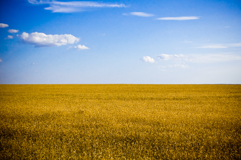 Steppe in Ukraine